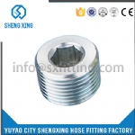 HYDRAULIC NPT MALE HOLLOW HEX PLUG