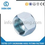 JIC 74°FEMALE PLUG CAP